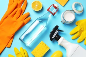 black mold removal products